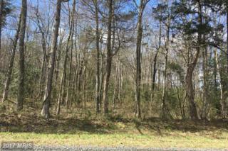 Lot 2 Grasty Gold Mine Road, Rhoadesville, VA 22542 (#OR9900068) :: Pearson Smith Realty