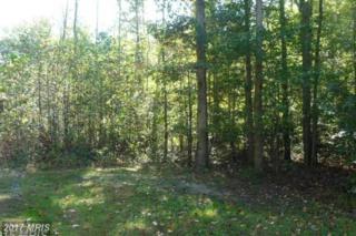 Homestead Drive, Rhoadesville, VA 22542 (#OR9906312) :: Pearson Smith Realty