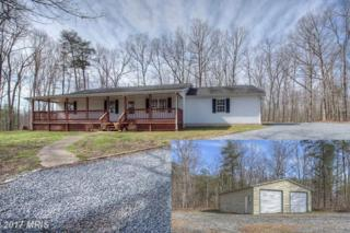 16196 Mountain Track Road, Orange, VA 22960 (#OR9909645) :: Pearson Smith Realty