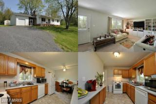 12185 Spring Street, Unionville, VA 22567 (#OR9918050) :: Pearson Smith Realty