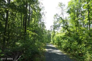 Colonial Lane, Locust Grove, VA 22508 (#OR9930138) :: Pearson Smith Realty