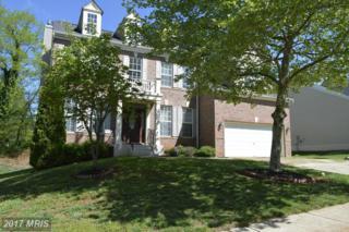 203 Aidan Drive, Orange, VA 22960 (#OR9932716) :: Pearson Smith Realty