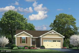 35312 Pheasant Ridge Road, Locust Grove, VA 22508 (#OR9948181) :: Pearson Smith Realty