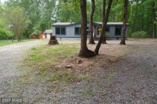 31702 Zoar Road, Locust Grove, VA 22508 (#OR9956166) :: Pearson Smith Realty