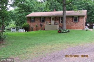 29057 Lacewood Road, Rhoadesville, VA 22542 (#OR9956250) :: Pearson Smith Realty