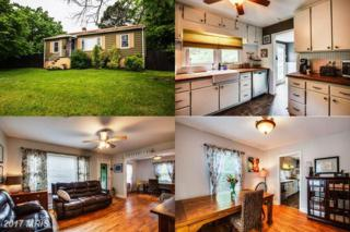 228 Selma Road, Orange, VA 22960 (#OR9957721) :: Pearson Smith Realty