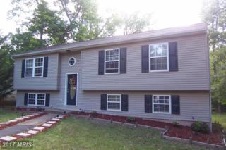 115 Republic Avenue, Locust Grove, VA 22508 (#OR9960093) :: Pearson Smith Realty