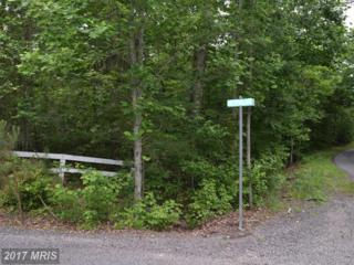 Hetfield Drive, Unionville, VA 22567 (#OR9960375) :: Pearson Smith Realty