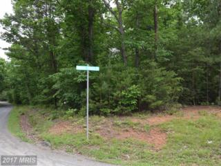 Indian Trace Trail, Unionville, VA 22567 (#OR9960390) :: Pearson Smith Realty