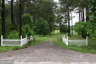 1340 Dabney House Road, VERNON HILL, VA 24597 (#OT9957566) :: Pearson Smith Realty