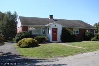 10 Terrace Lane, Luray, VA 22835 (#PA8752059) :: Pearson Smith Realty