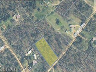 Mosbys Camp Rd., Stanley, VA 22851 (#PA9825374) :: Pearson Smith Realty