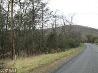 Hollow Run, Luray, VA 22835 (#PA9839751) :: Pearson Smith Realty
