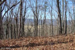 River View Place, Shenandoah, VA 22849 (#PA9852064) :: LoCoMusings