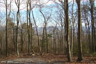 0 FOREST DRIVE EXTENDED, Luray, VA 22835 (#PA9855939) :: LoCoMusings