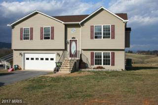 178 High Knoll Terrace, Shenandoah, VA 22849 (#PA9861807) :: LoCoMusings