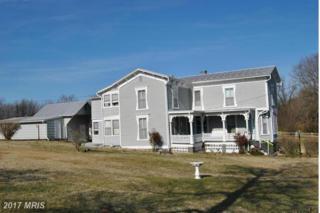 228 Masonic Drive, Stanley, VA 22851 (#PA9867256) :: LoCoMusings