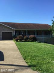 16 Nichols Road, Luray, VA 22835 (#PA9875012) :: Pearson Smith Realty