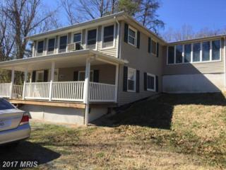361 Mountainview Drive, Luray, VA 22835 (#PA9879377) :: Pearson Smith Realty