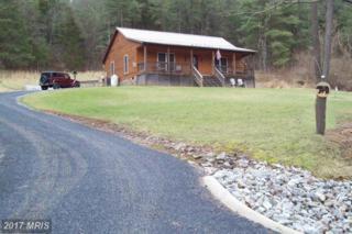 191 Overlook Drive, Rileyville, VA 22650 (#PA9893729) :: LoCoMusings