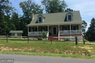 462 Kibler Drive, Luray, VA 22835 (#PA9897821) :: LoCoMusings