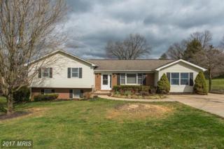13 Nichols Road, Luray, VA 22835 (#PA9907608) :: Pearson Smith Realty