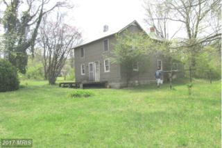 1383 Clearview Road, Luray, VA 22835 (#PA9913959) :: Pearson Smith Realty