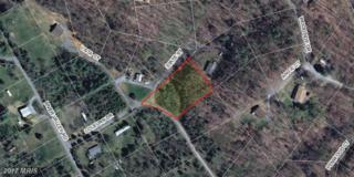 400 Colburn Drive, Shenandoah, VA 22849 (#PA9926352) :: Pearson Smith Realty
