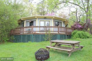 287 Mountainview Drive, Luray, VA 22835 (#PA9930769) :: Pearson Smith Realty