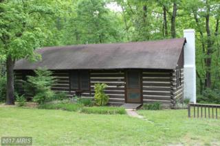 222 Forest Road, Luray, VA 22835 (#PA9933036) :: Pearson Smith Realty