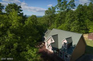 541 Forest Road, Luray, VA 22835 (#PA9937682) :: Pearson Smith Realty