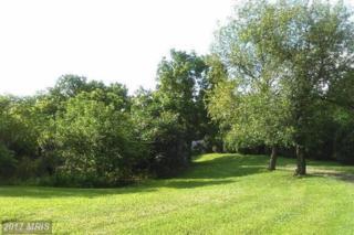0 Ruffner House And Hill House, Luray, VA 22835 (#PA9955315) :: Pearson Smith Realty