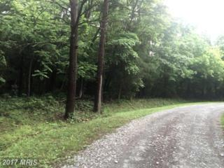 1 High Woods Road, Stanley, VA 22851 (#PA9957699) :: Pearson Smith Realty
