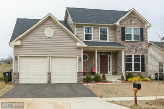 14315 Devinger Place, Accokeek, MD 20607 (#PG9010595) :: Pearson Smith Realty