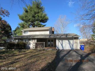 15816 Perkins Lane, Bowie, MD 20716 (#PG9831313) :: Pearson Smith Realty