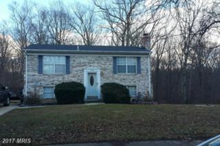 15706 Alhambra Court, Accokeek, MD 20607 (#PG9832618) :: Pearson Smith Realty