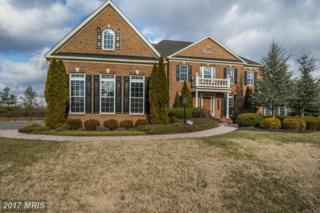 13802 Dawn Whistle Way, Bowie, MD 20721 (#PG9836911) :: Pearson Smith Realty