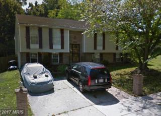 17223 Brookmeadow Lane, Upper Marlboro, MD 20772 (#PG9838292) :: Pearson Smith Realty