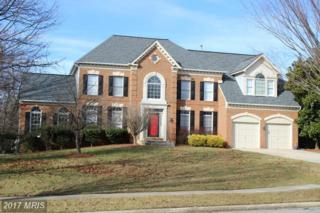 11904 Shadystone Terrace, Bowie, MD 20721 (#PG9841540) :: Pearson Smith Realty