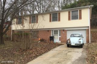 6108 Hellen Lee Drive, Clinton, MD 20735 (#PG9842993) :: Pearson Smith Realty