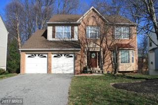 10204 Indian Summer Court, Mitchellville, MD 20721 (#PG9847962) :: LoCoMusings