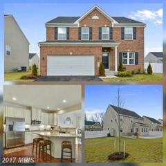 6112 Flemington Court, Capitol Heights, MD 20743 (#PG9848640) :: LoCoMusings