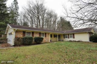 16117 Pointer Ridge Drive, Bowie, MD 20716 (#PG9855045) :: Pearson Smith Realty