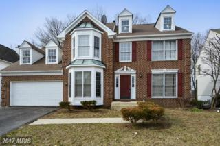 6802 Megan Lane, Greenbelt, MD 20770 (#PG9858967) :: Pearson Smith Realty