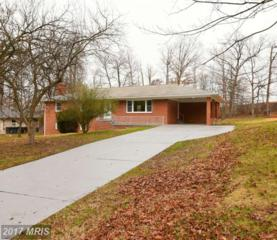 6504 Springbrook Lane, Clinton, MD 20735 (#PG9866588) :: LoCoMusings