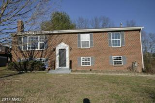 12305 Birchview Drive, Clinton, MD 20735 (#PG9867640) :: LoCoMusings