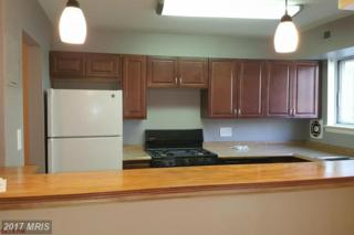11320 Cherry Hill Road #202, Beltsville, MD 20705 (#PG9872349) :: Pearson Smith Realty