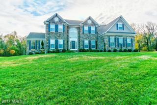 14503 Dew Drive, Bowie, MD 20721 (#PG9874020) :: Pearson Smith Realty