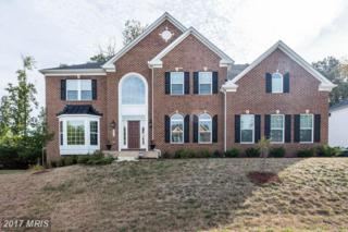 8410 Woodchase Court, Clinton, MD 20735 (#PG9882558) :: Pearson Smith Realty