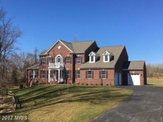 12804 Contee Manor Road, Bowie, MD 20721 (#PG9885985) :: LoCoMusings
